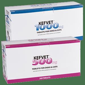 Kefvet-300Tabs-500mg,1000mg